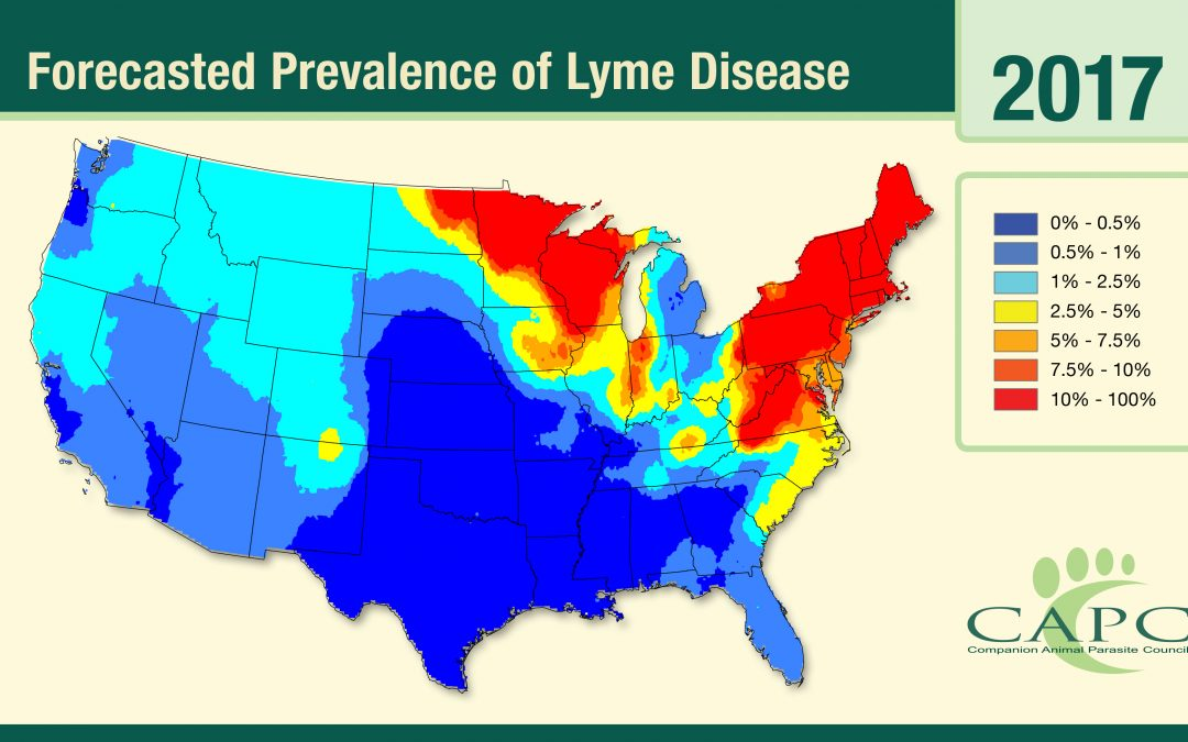 Map forecasting Lyme disease prevalence across US