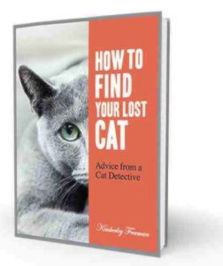 How to Find Your Lost Cat